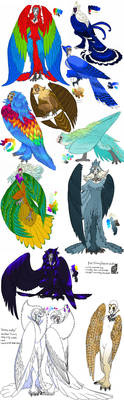 Bird titans sketchdump