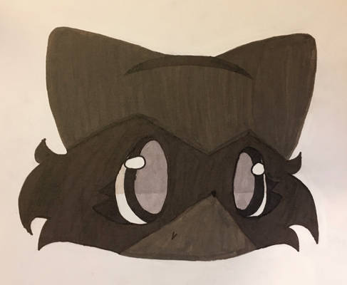Raccoonbud 7