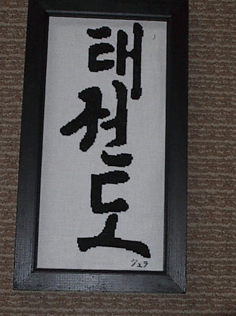TaeKwonDo CrossStitch by JealaTriumph