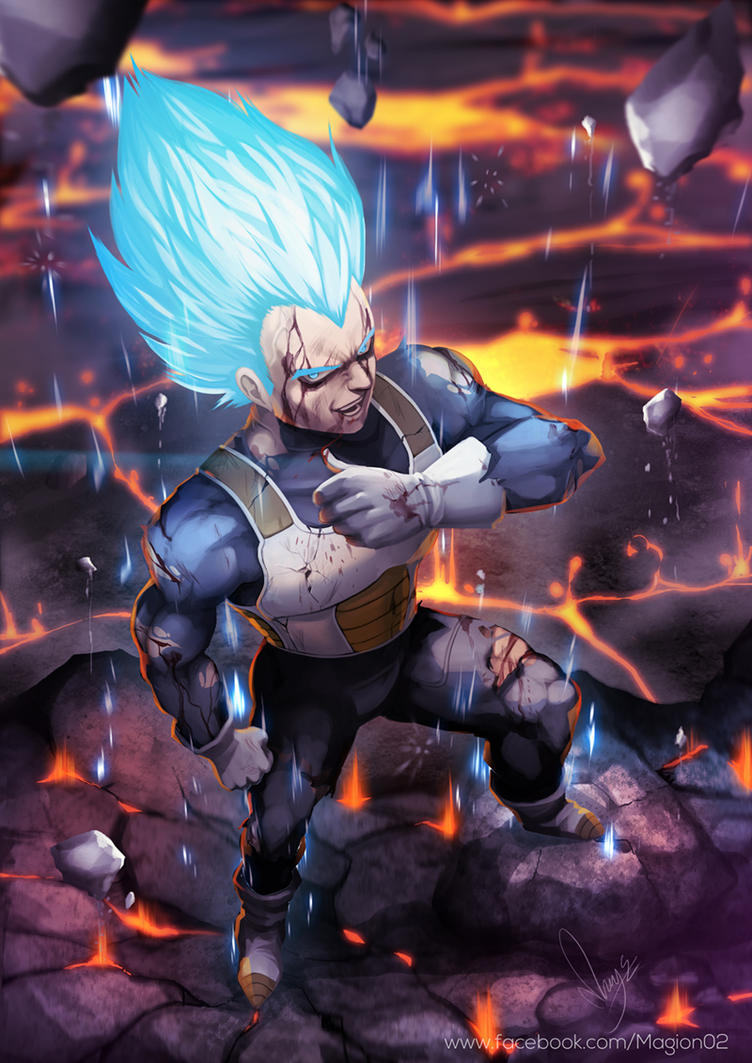 Vegeta Super Saiyan god by magion02
