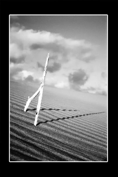 unsynergy Shadow by aria-kamandanu