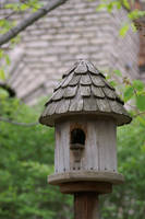 Birdhouse by LadyRStock
