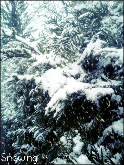 Winter time by KarmiCookieMonsta