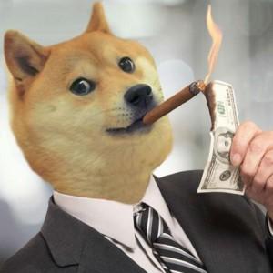 SonicCheddar's Profile Picture