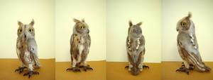 Life-sized Oriental Scops Owl (needlefelted)
