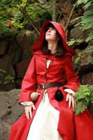 Red Wizard of Thay by Zhenoa
