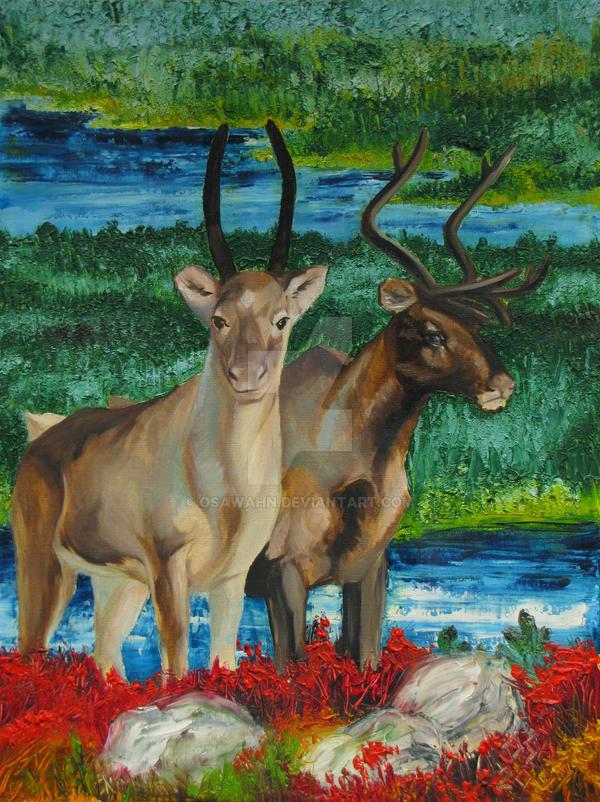 Reindeers at Otsamo by OsaWahn