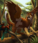 T_Piro_Young Gryphon_1