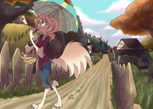 A walk on the village