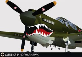 Curtiss-Wright P40 'Warhawk' by RubenGaspar