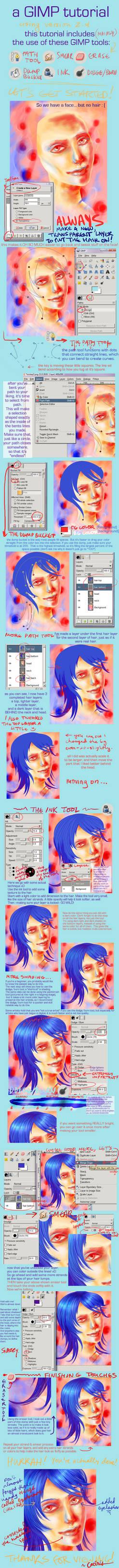 .GIMP hair tutorial.
