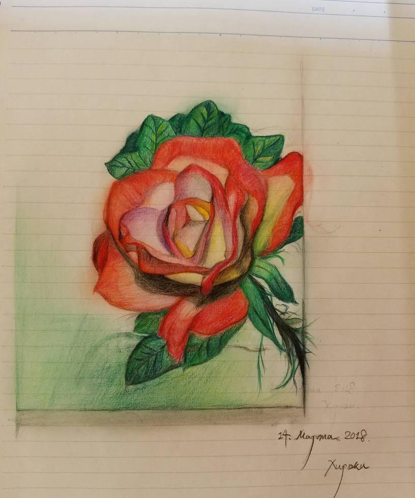 flower by dxm8975