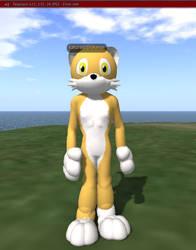 Ginger Cat Avatar