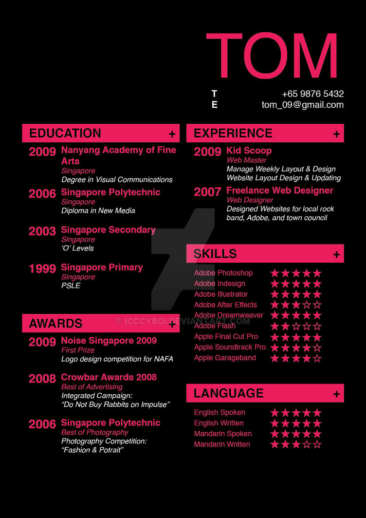 Professional Resume Design Free Download