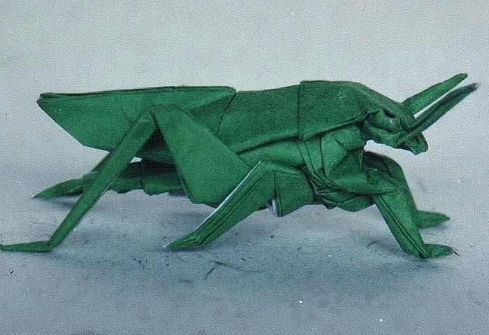 Origami Grasshopper By Ahurocks
