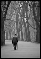 Solitude by iuli72an