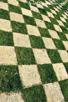 Chess Battle Field by iuli72an