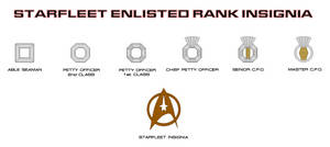 Enlisted Rank Insignia
