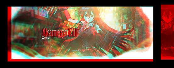 Akame Ga Kill! by iSignatureZz