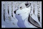 Snowfall [SVA]