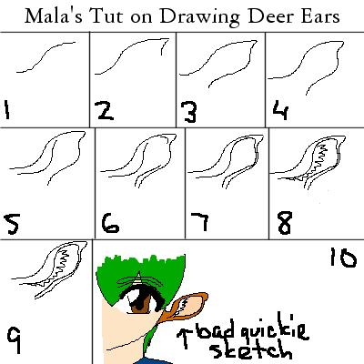 how to draw deer ears