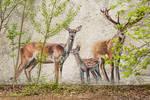 deer graffiti #2