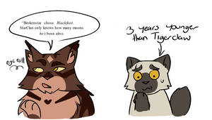 Leopardstars Honour Funny Timeline Moments