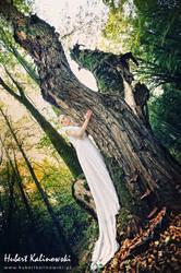 Tree0000 by AlieNdwa