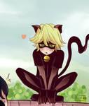 Chat Noir y Marinette
