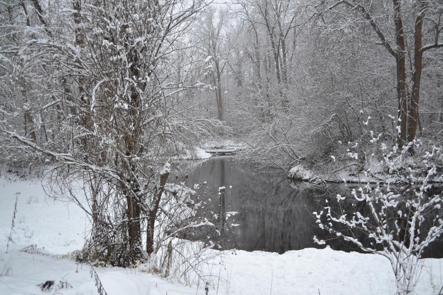 Waterfront Park in Leavenworth, WA in Winter 10 by Singing-Wolf-12
