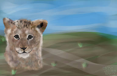 Lion Cub by Wolf-Tracks