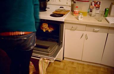 oven cat