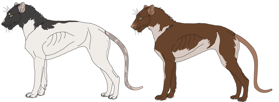 Rodent dogs by Elitemonkeys