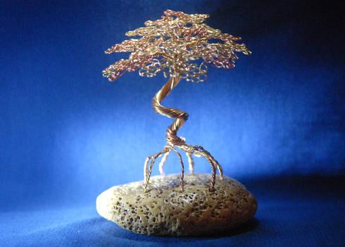 Wire Tree Bonsai Sculpture in Red Mangrove design