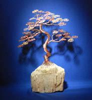 Bonsai Wire Tree Sculpture in an Upright Informal