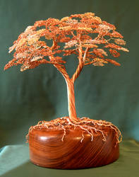 Red Maple wire tree sculpture