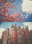 a building that grows into a flower by vampire-zombie