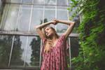 wisteria sunday