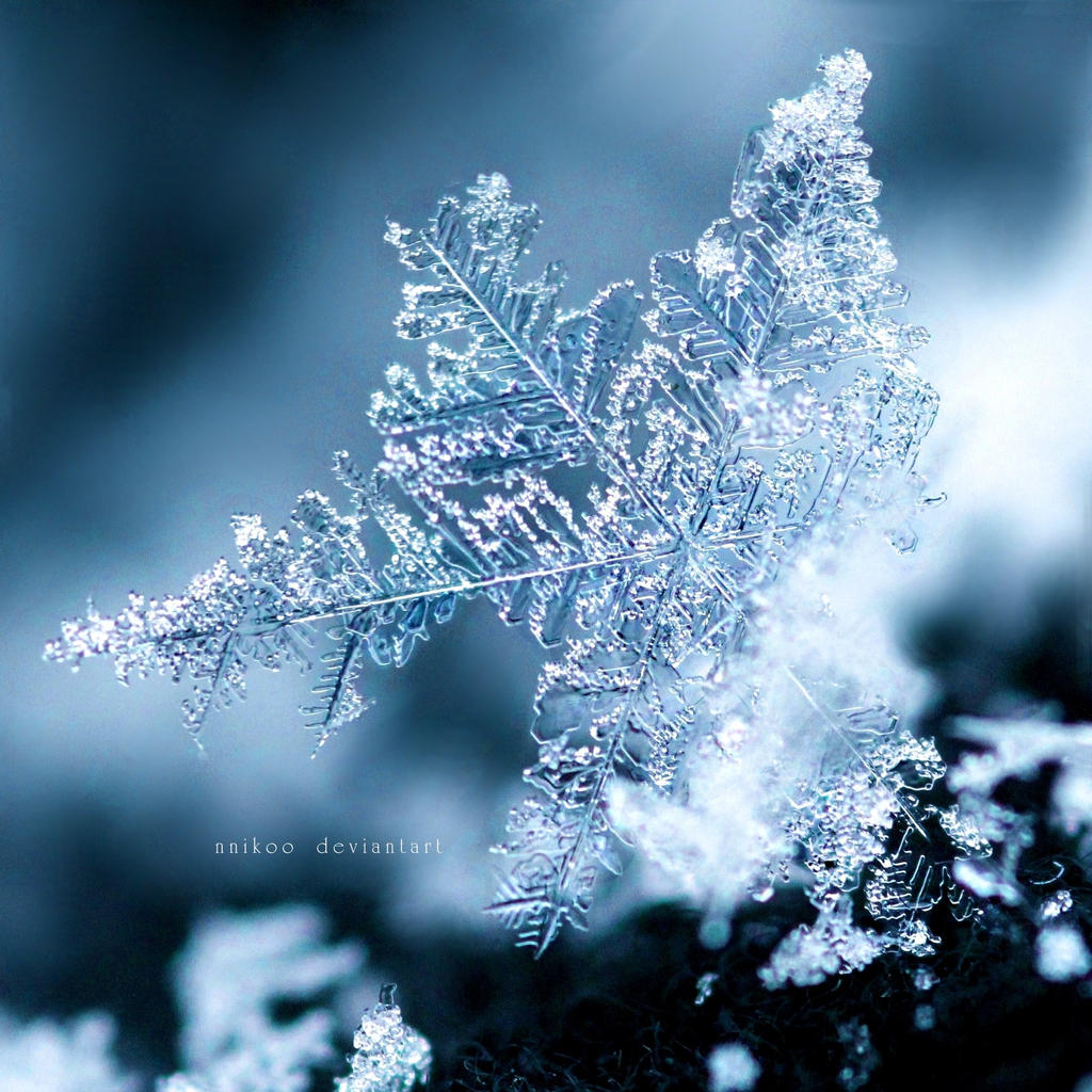 the snowflake by nnikoo on deviantart
