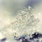 Mysterious Snowflake