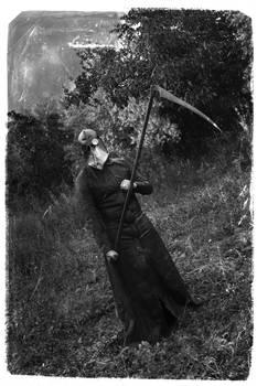 Do Not Fear The Reaper Vol III
