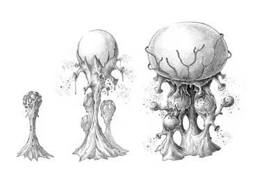 Mushrooms 2 by Mad-Hatman