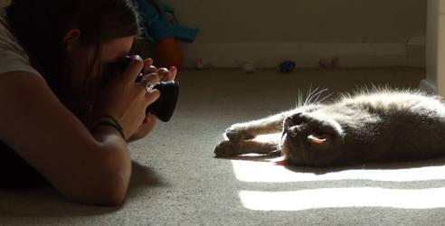 Kat vs. Cat by FurLined