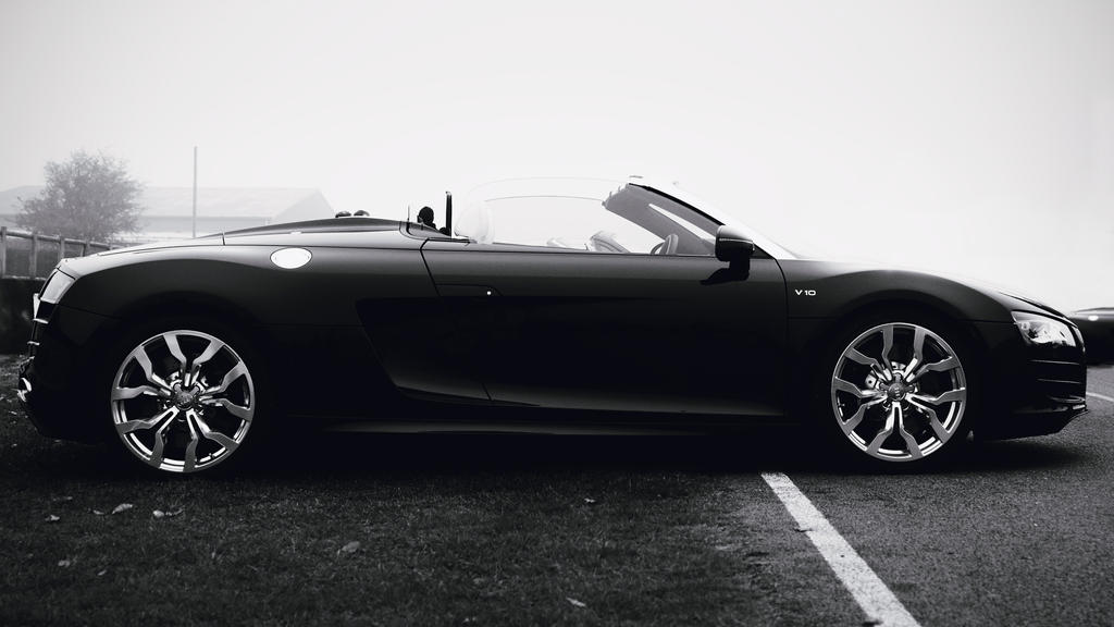 R8 Spyder by FurLined