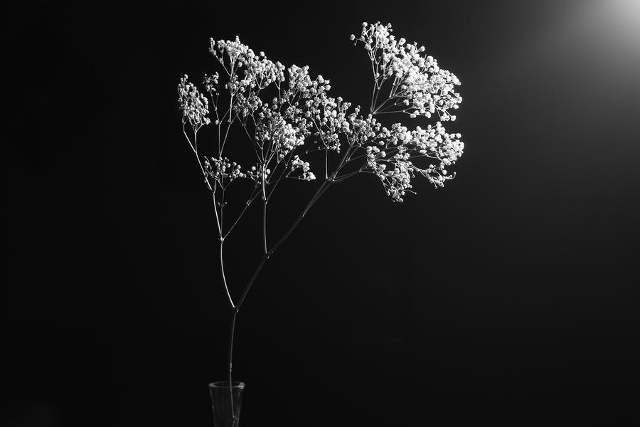 BlackWhite4 by LidiaMillen