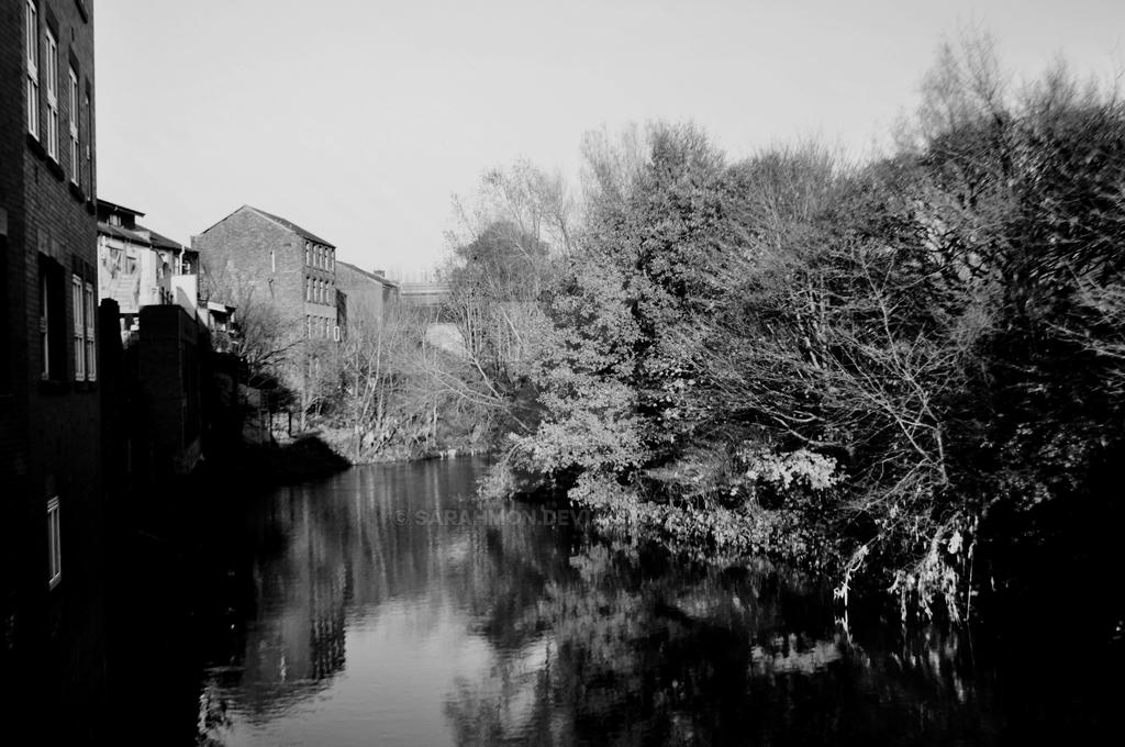 River Irwell by Sarahmon