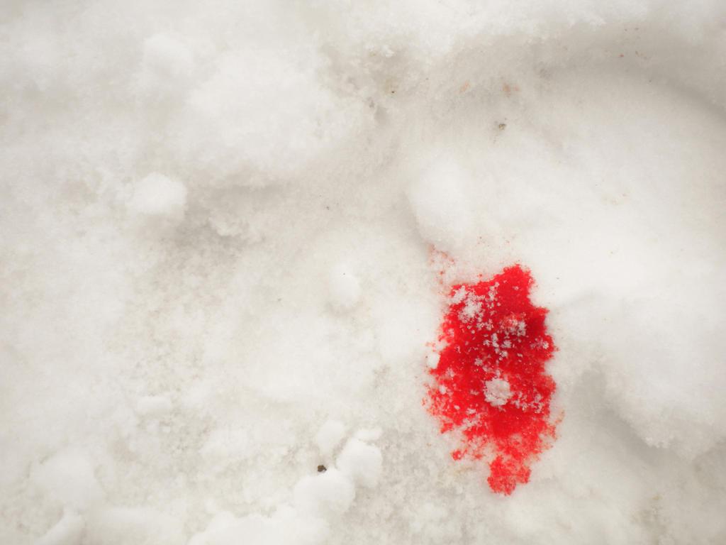 Сонник - снег если вам приснился снег, то в вашей жизни все в порядке.