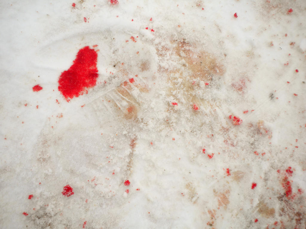 blood_on_the_snow_iii_by_diegokid.jpg