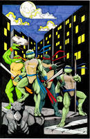 Turtles by LangleyEffect
