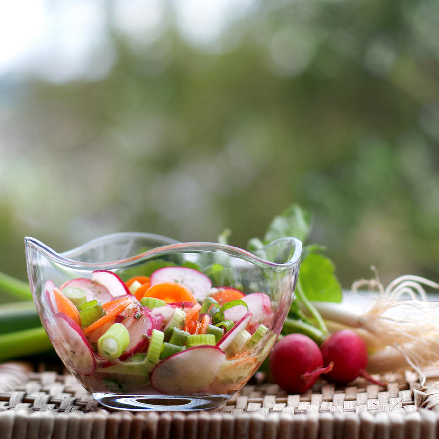 November Salad by Z740